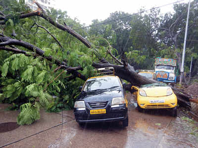 Cuffe Parade cops pick up axe to clear fallen trees