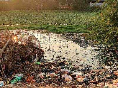 Madar Lake of Godhavi turns into sewage swamp
