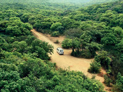 Gondia: After sanctioning forest land to Adani group, govt allots land for research centre