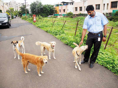 NGO to visit housing socs to mitigate human-dog conflict
