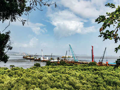 MMRDA: Cut 1,172 trees for sea link project