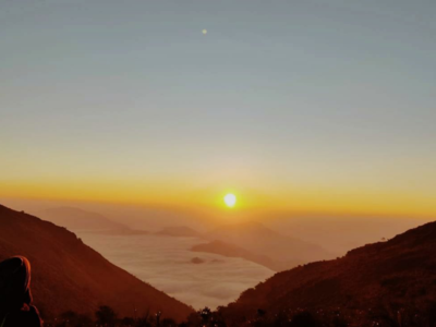New hill station discovered in Andhra Pradesh's Eastern Ghats