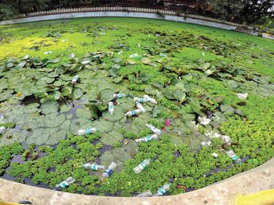 Natural restoration for Sarasbaug pond