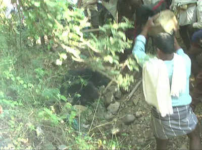 Panicked villagers attack a bear and almost beat the animal to death.