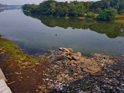 Poisoning kills fish in Pavana
