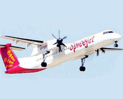 DGCA, SpiceJet turned blind eye to repeated lapses by senior pilot