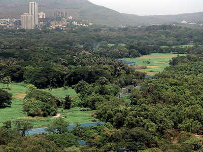More land sought at Aarey colony, now for Metro 6