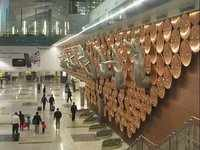 Delhi: Pay up to Rs 50 for getting check-in bag scanned at IGI
