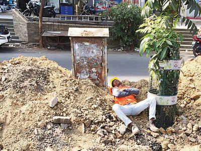 Mumbai Speaks: Why trees are necessary