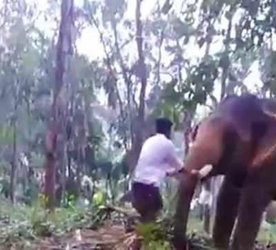 Watch: Kerala man's 'Bahubali' stunt fails, hospitalised