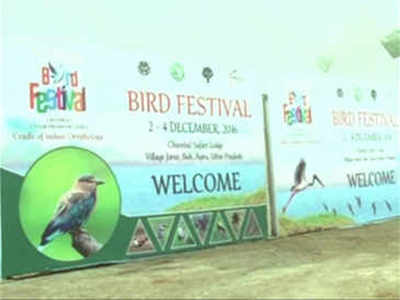Bird Fest will take wings this time around