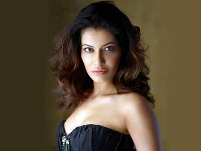 Police block-unblock Payal Rohatgi, apologise after CM's wife supports her
