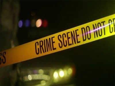 Double murder shocks Bengaluru: Man murders wife in city, kills mom-in-law in Kolkata, shoots self