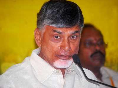 Ahead of N Chandrababu Naidu's Deeksha, Andhra Pradesh CID raids IT firm over sand site hacking
