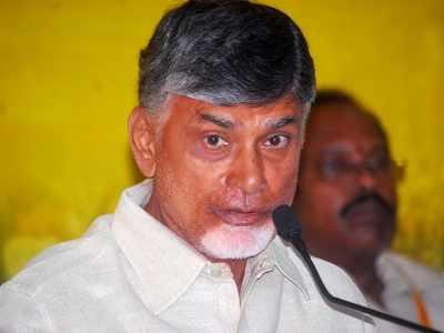 Ahead of N Chandrababu Naidu's Deeksha, Andhra Pradesh CID raids IT firm over sand site hacking