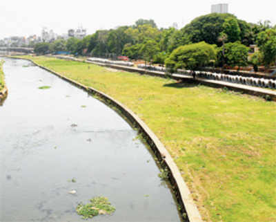 Fix leakages in 3 days: PMC to irrigation dept