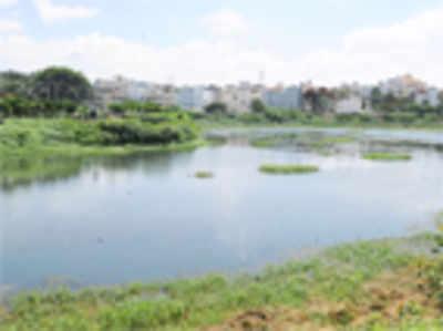 Upa Lokayukta sets 3-month deadline to restore city lakes