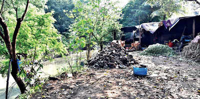 PMC removed just 4 of 30 encroachments on city's water streams