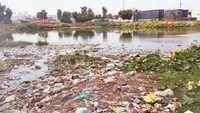 Noida: 950 ponds still under heaps of plastic, DA extends deadline