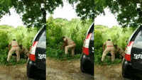 On cam: UP policemen beat each other for front seat in patrol vehicle