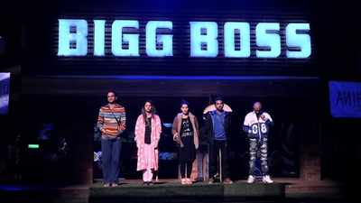 Highlights: Bigg Boss 11, Day 101, 10 January 2018: Arshi Khan chooses Shilpa Shinde as meanest in the task, Akash Dadlani gets evicted