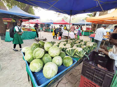 60 illegal farmers' markets asked to shut