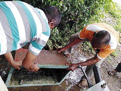WR cleans spots to stop mosquito breeding