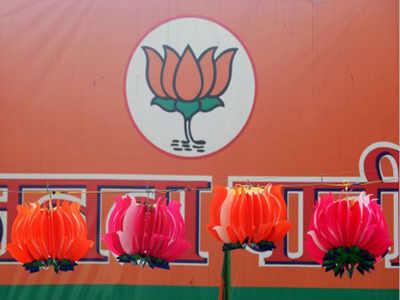 Vekariya quits as Surat BJP gen secy