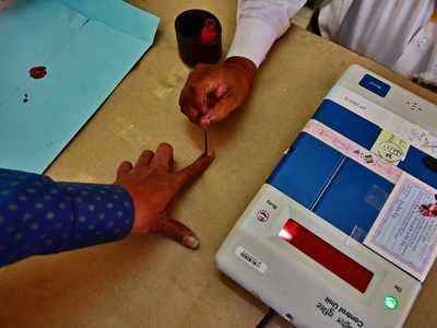 3,239 candidates in fray for Maharashtra assembly elections
