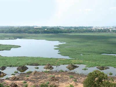 BBMP to soon raze encroachments around lakes