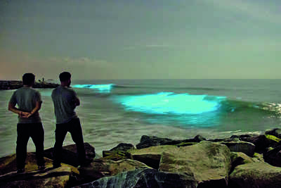 Karnataka: Sparkle in the seas