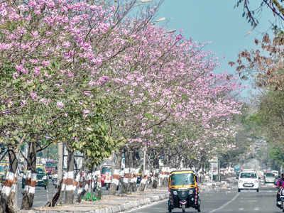 Mumbai Speaks: Tokyo in Mumbai