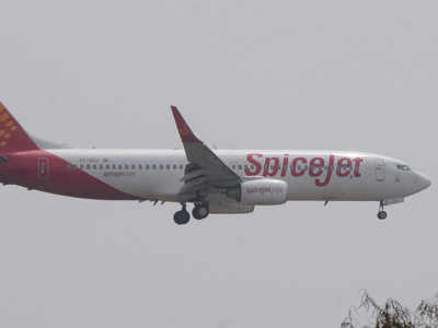 DGCA suspends SpiceJet pilot for runway incursion at Ahmedabad airport