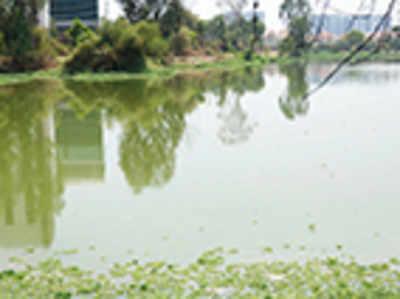 A whiff of Ulsoor at Bellandur