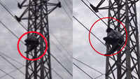 Man climbs electric pole after police call him for investigation in Telangana