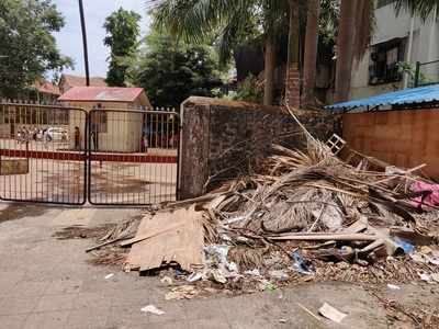 Overgrown branches, garbage pose risk to Dadar school students