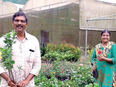 Karnataka: Nursery sells saplings in bamboo instead of plastic