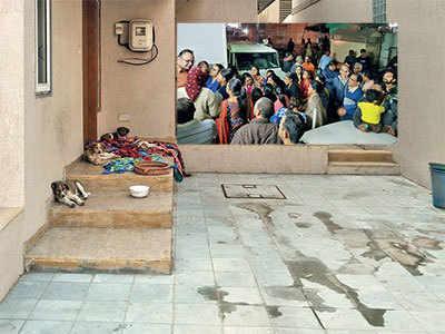 Dog lover, neighbours spar over stray menace in Ahmedabad