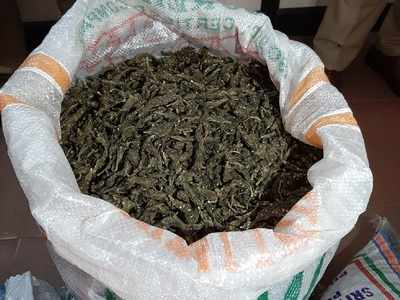 Pune District Police seize 14 kgs of ganja being smuggled in from Telangana
