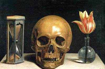 What You See When You See: Life beyond the still life