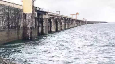 Maharashtra News LIVE Updates: With good rains, Marathwada dams hold enough stock till next monsoon