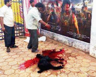 'Bahubali' opens with goat sacrifice