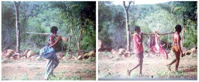 Cameras trap poachers