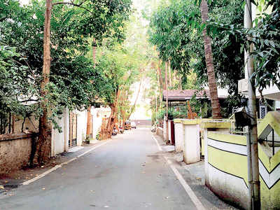 These leafy by-lanes will become mere memory if PMC has its way