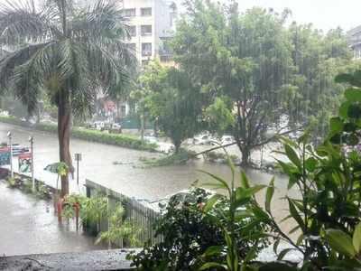 Rains lash Pune, fire brigade gets tree-fall, flood calls