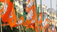 Delhi Assembly poll: BJP to conduct surveys for better selection of candidates