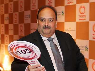 Loans over Rs 68k crore, including to Mehul Choksi's firms, written off: RTI