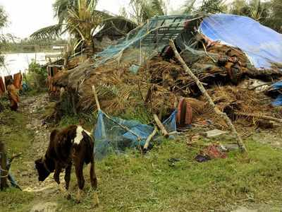 Cyclone Bulbul: Seven dead, 2.73 lakh affected in West Bengal