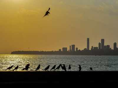 At 34 degrees Celsius, Mumbai continues to see clear skies