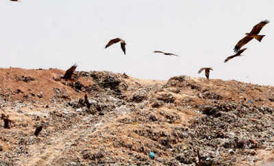 BBMP to go after firm for Mandur 'waste' of money